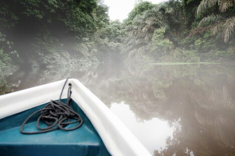 Tortuguero jungle river