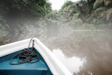 Tortuguero jungle river