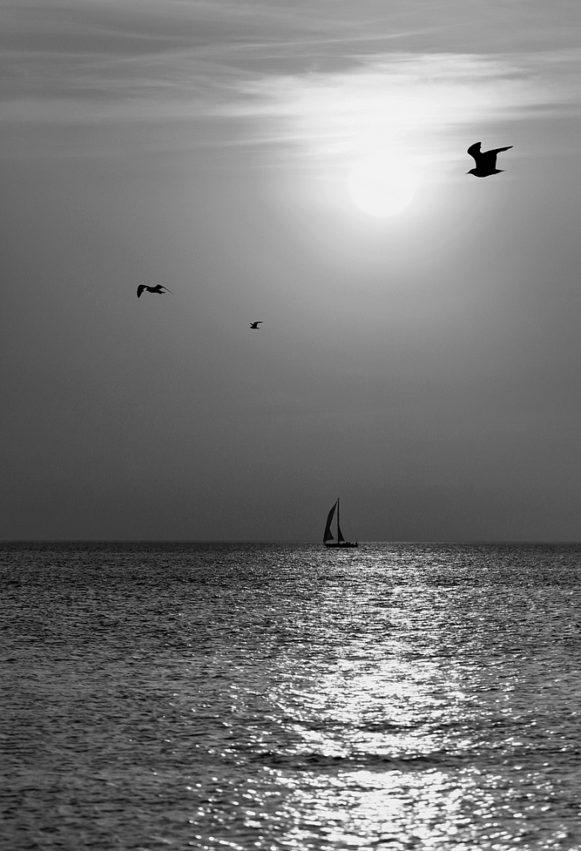 zeilboot boat sea zee