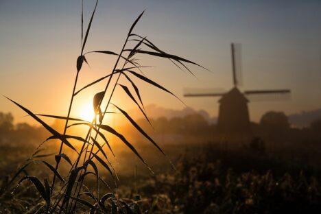 Molen zonsopkomst Alkmaar