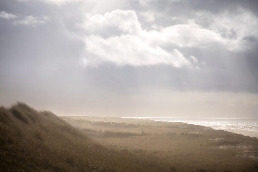 duinen-mist-zee-strand